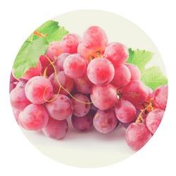 Концентрированный экстракт винограда